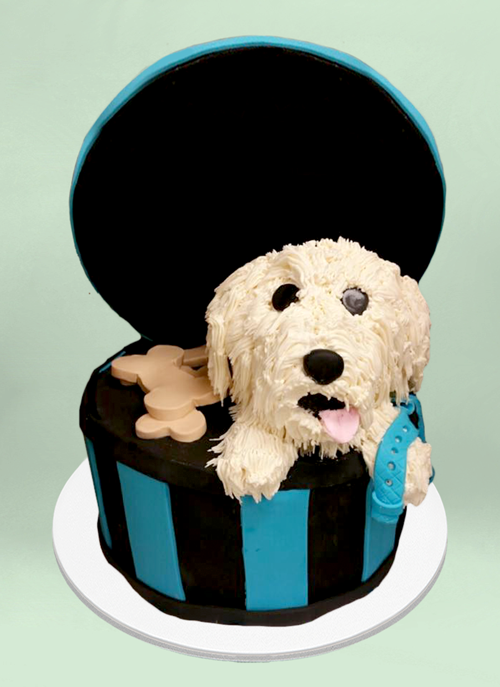 Photo: fondant circle box with 3d frosted dox sticking out and fondant dog treats